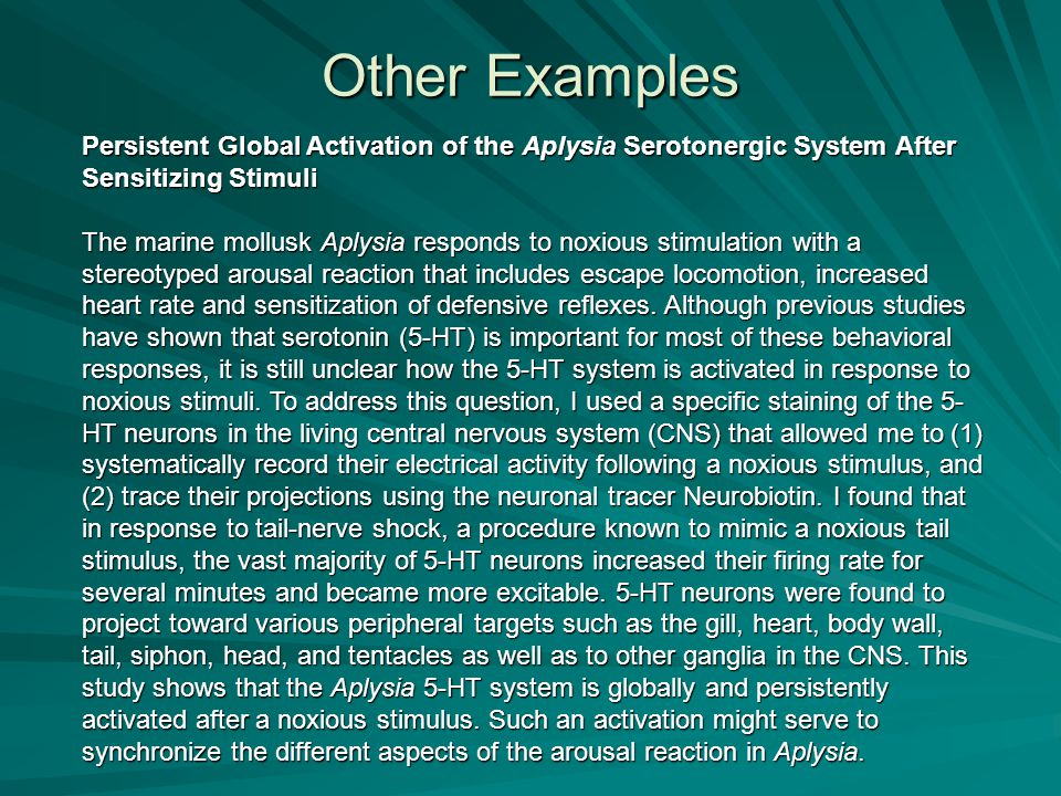 Other Examples Persistent Global Activation of the Aplysia Serotonergic System After Sensitizing Stimuli The marine mollusk Aplysia responds to noxiou