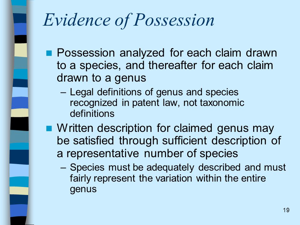 19 Evidence of Possession Possession analyzed for each claim drawn to a species, and thereafter for each claim drawn to a genus –Legal definitions of