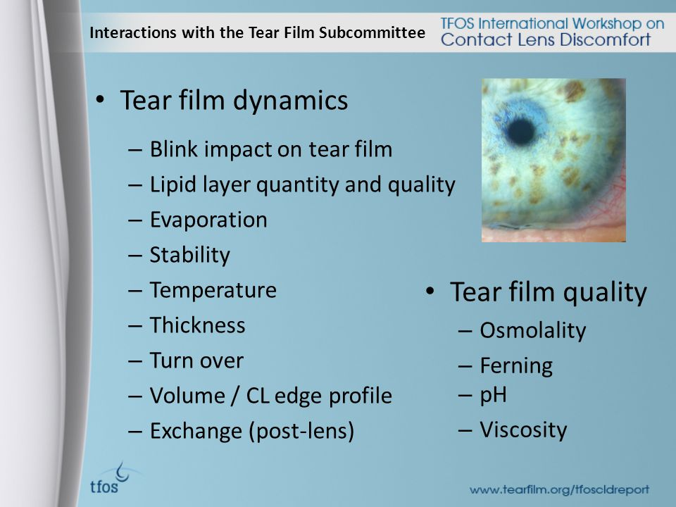Interactions with the Tear Film Subcommittee Tear film dynamics – Blink impact on tear film – Lipid layer quantity and quality – Evaporation – Stability – Temperature – Thickness – Turn over – Volume / CL edge profile – Exchange (post-lens) Tear film quality – Osmolality – Ferning – pH – Viscosity
