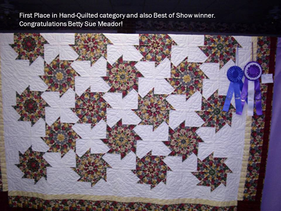 First Place in Hand-Quilted category and also Best of Show winner.