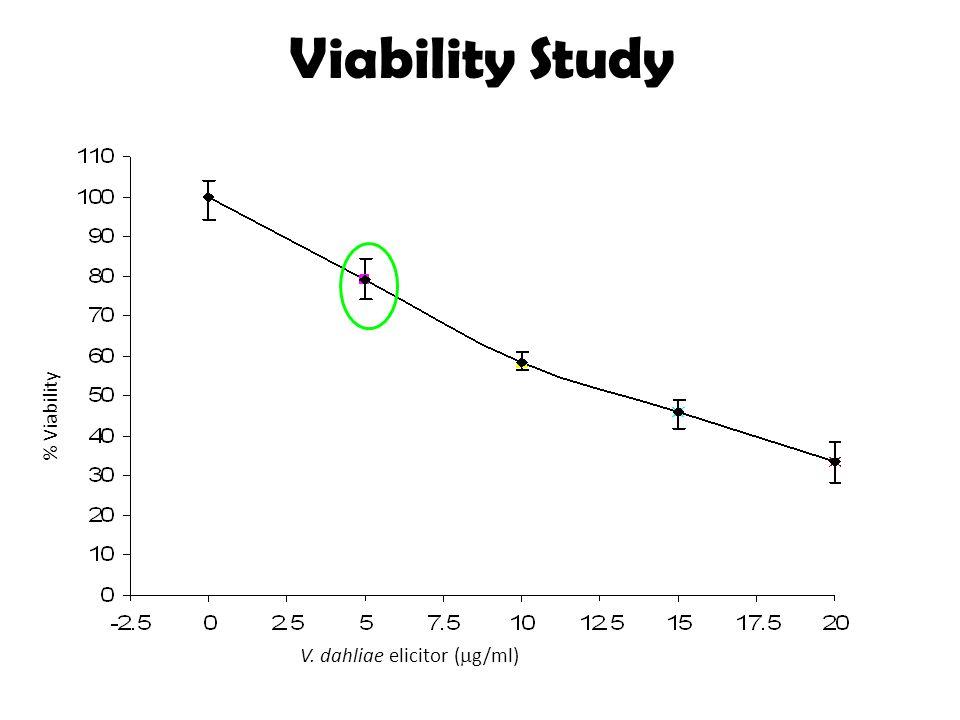 Viability Study V. dahliae elicitor (  g/ml) % Viability
