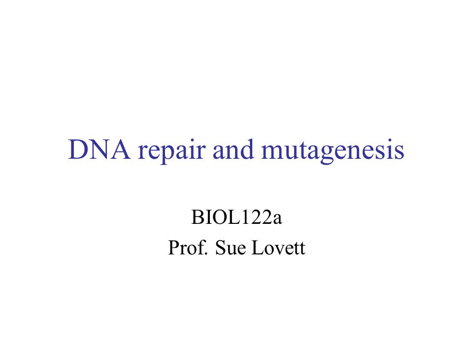 DNA repair and mutagenesis BIOL122a Prof. Sue Lovett