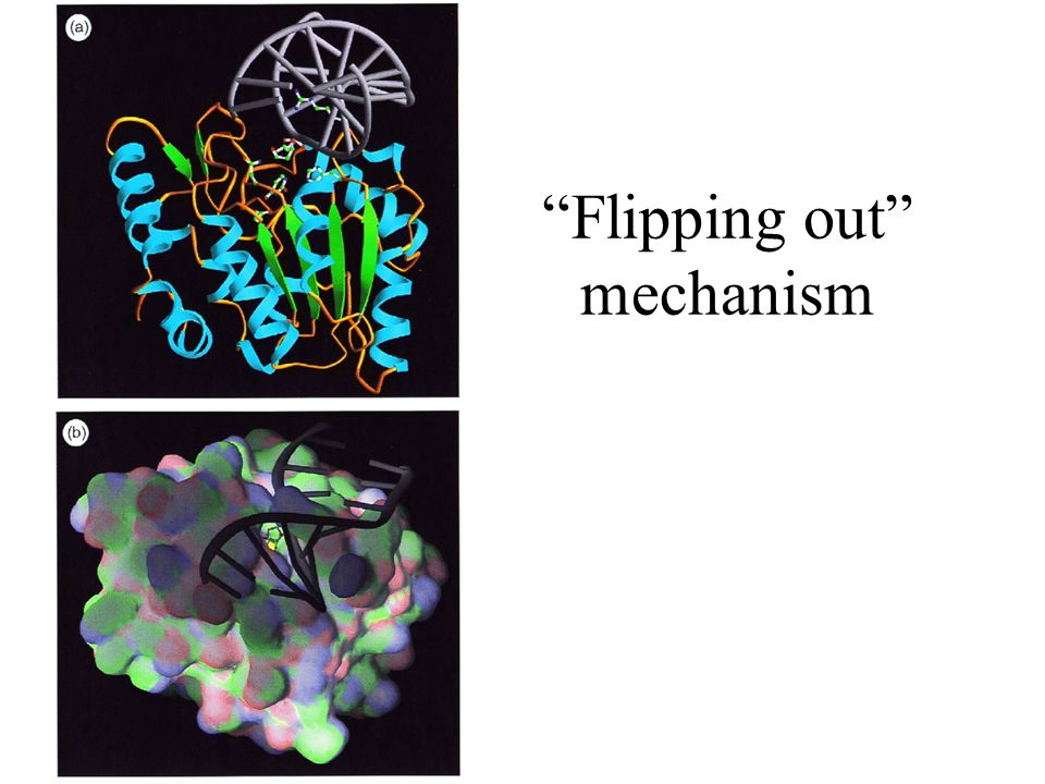 Flipping out mechanism