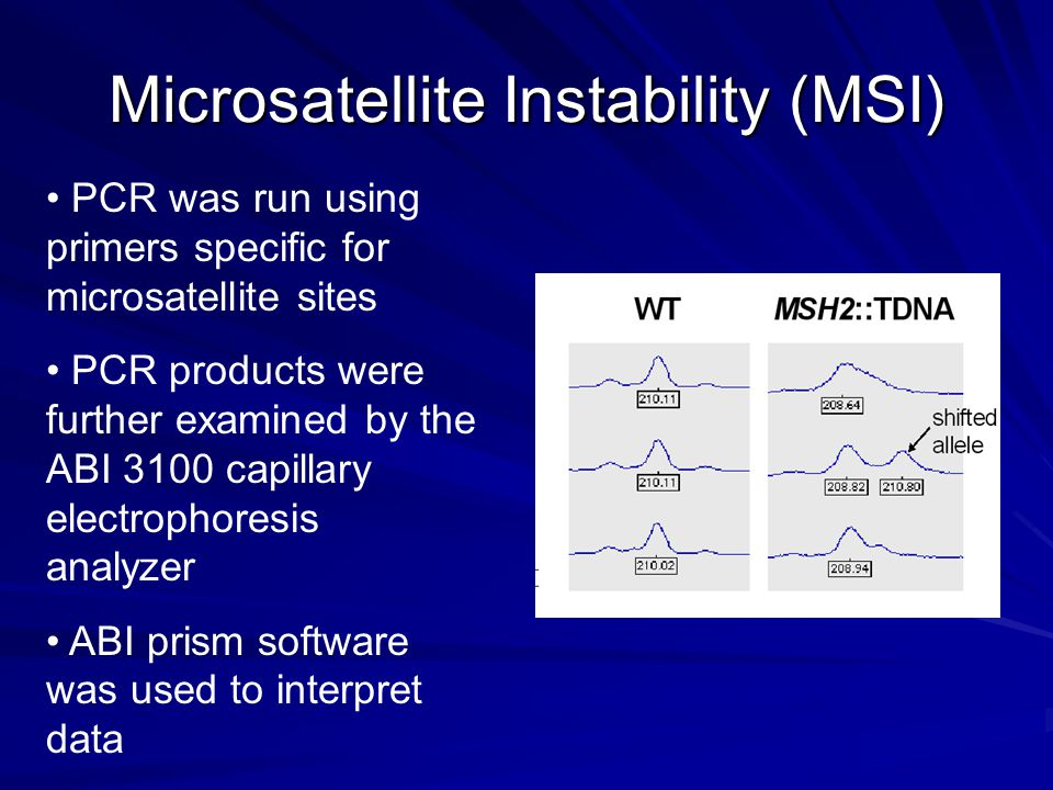Microsatellite Instability (MSI) PCR was run using primers specific for microsatellite sites PCR products were further examined by the ABI 3100 capillary electrophoresis analyzer ABI prism software was used to interpret data