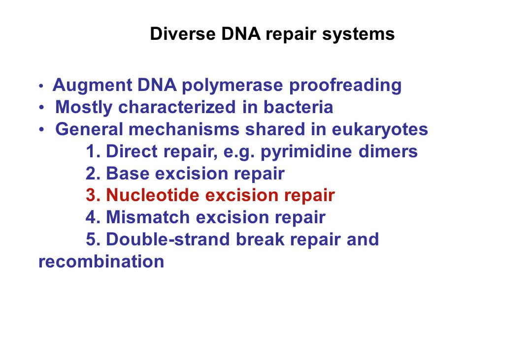 Diverse DNA repair systems Augment DNA polymerase proofreading Mostly characterized in bacteria General mechanisms shared in eukaryotes 1. Direct repa