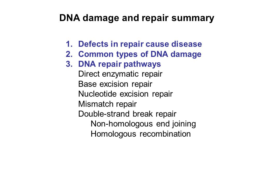 DNA damage and repair summary 1.Defects in repair cause disease 2.Common types of DNA damage 3.DNA repair pathways Direct enzymatic repair Base excisi