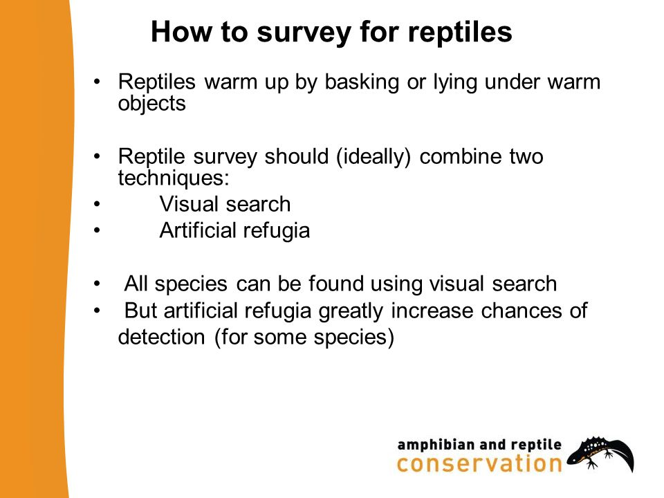 Licensing A licence is required to survey sand lizards or smooth snakes You can be covered by the ARC's survey licence, subject to training or experience ask your trainer to pass your details to ARC if you think you will encounter protected reptiles during your surveys!