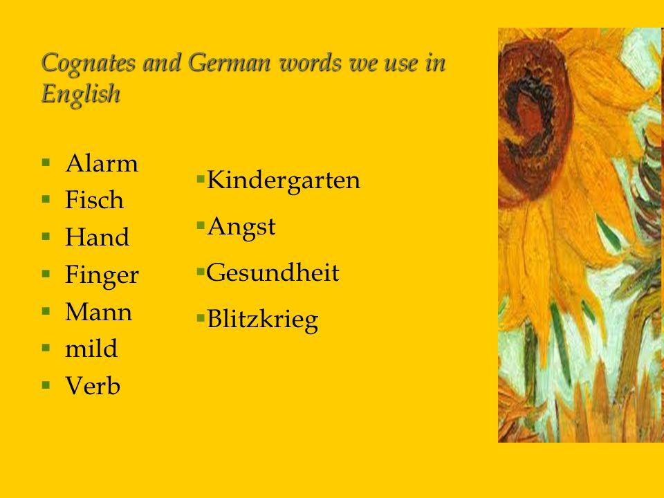 Cognates and German words we use in English   Alarm   Fisch   Hand   Finger   Mann   mild   Verb  Kindergarten  Angst  Gesundheit  Blitzkrieg