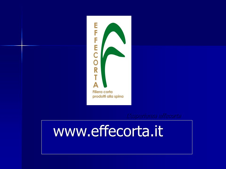 L'esperienza effecorta a cura di Pietro Angelini, a cura di Pietro Angelini, scio fondatore ed ideatore effecorta Capannori, 23-01-2010 www.effecorta.