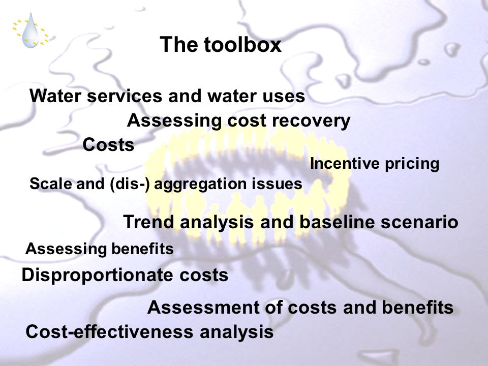The toolbox Water services and water uses Trend analysis and baseline scenario Scale and (dis-) aggregation issues Costs Cost-effectiveness analysis Disproportionate costs Assessment of costs and benefits Incentive pricing Assessing cost recovery Assessing benefits