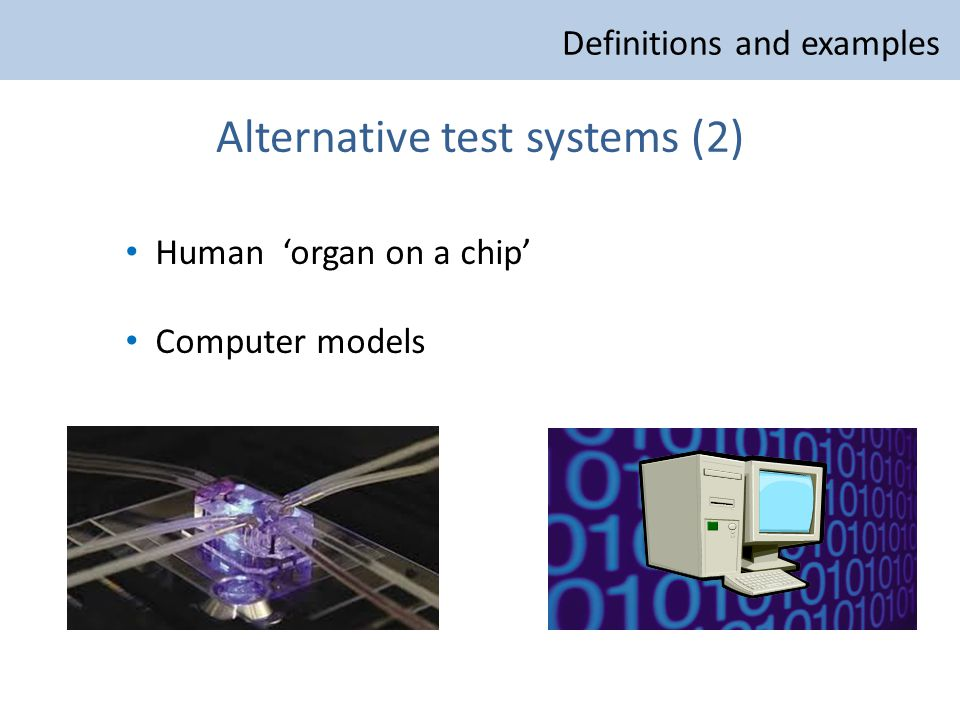 Alternative test systems (2) Human 'organ on a chip' Computer models Definitions and examples