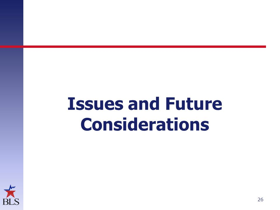 Issues and Future Considerations 26