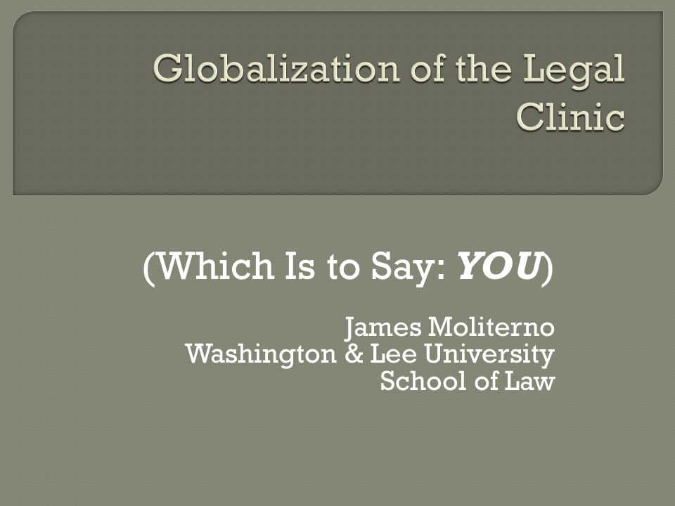 (Which Is to Say: YOU) James Moliterno Washington & Lee University School of Law