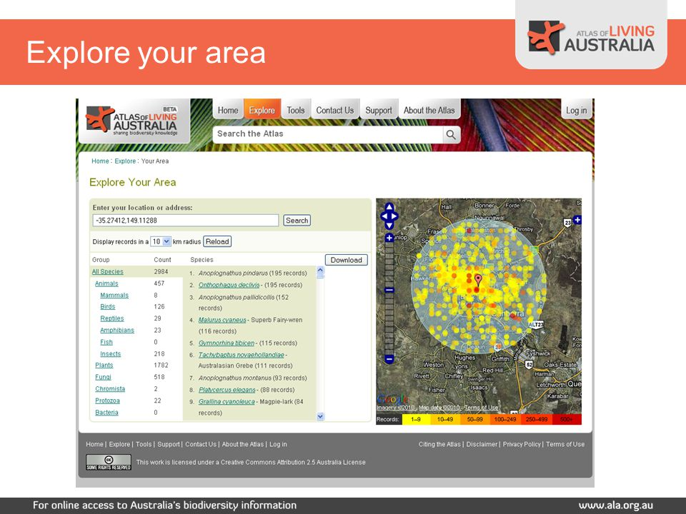 Explore your area – birds only