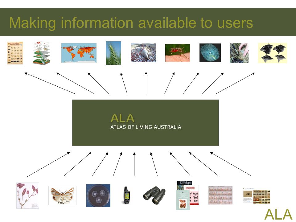 ALA Making information available to users