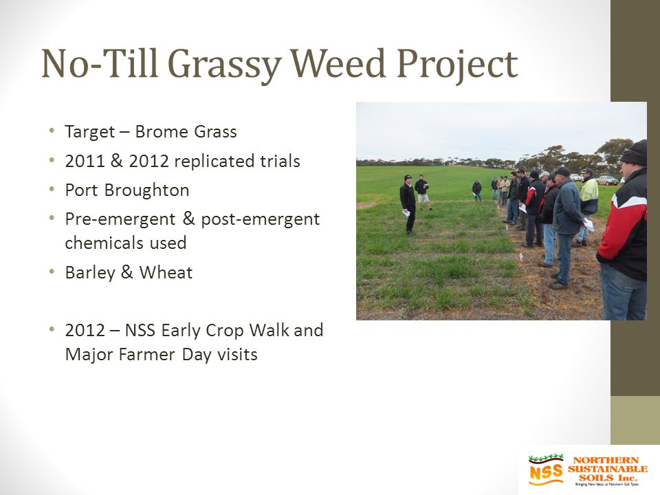 No-Till Grassy Weed Project Target – Brome Grass 2011 & 2012 replicated trials Port Broughton Pre-emergent & post-emergent chemicals used Barley & Wheat 2012 – NSS Early Crop Walk and Major Farmer Day visits