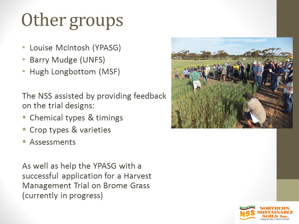 Other groups Louise McIntosh (YPASG) Barry Mudge (UNFS) Hugh Longbottom (MSF) The NSS assisted by providing feedback on the trial designs:  Chemical types & timings  Crop types & varieties  Assessments As well as help the YPASG with a successful application for a Harvest Management Trial on Brome Grass (currently in progress)