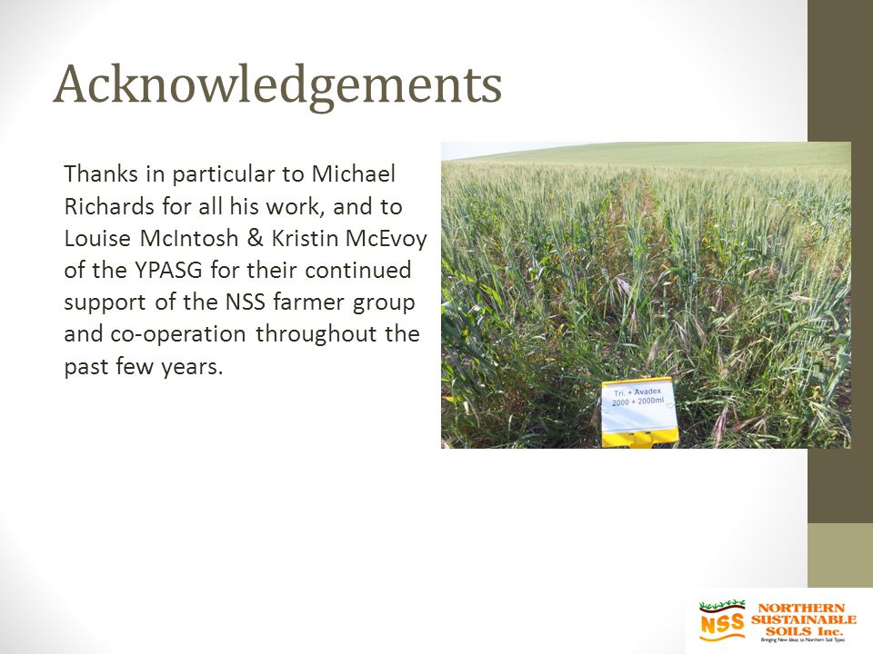 Acknowledgements Thanks in particular to Michael Richards for all his work, and to Louise McIntosh & Kristin McEvoy of the YPASG for their continued support of the NSS farmer group and co-operation throughout the past few years.