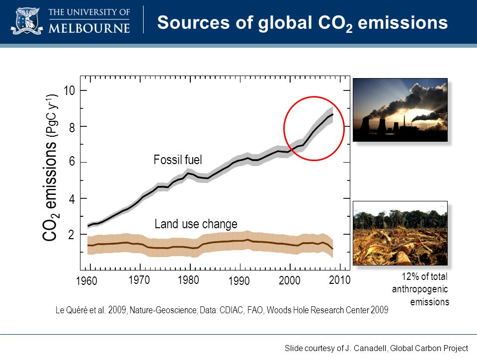 Sources of global CO 2 emissions 12% of total anthropogenic emissions Le Quéré et al. 2009, Nature-Geoscience; Data: CDIAC, FAO, Woods Hole Research C
