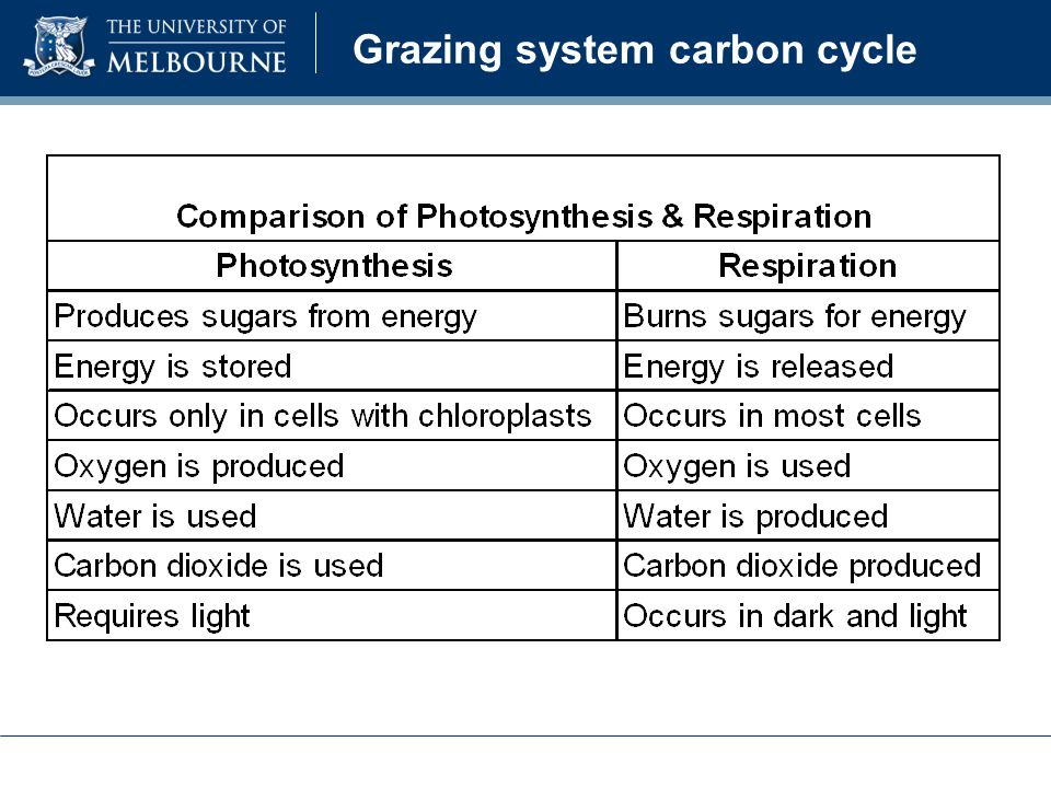 Grazing system carbon cycle