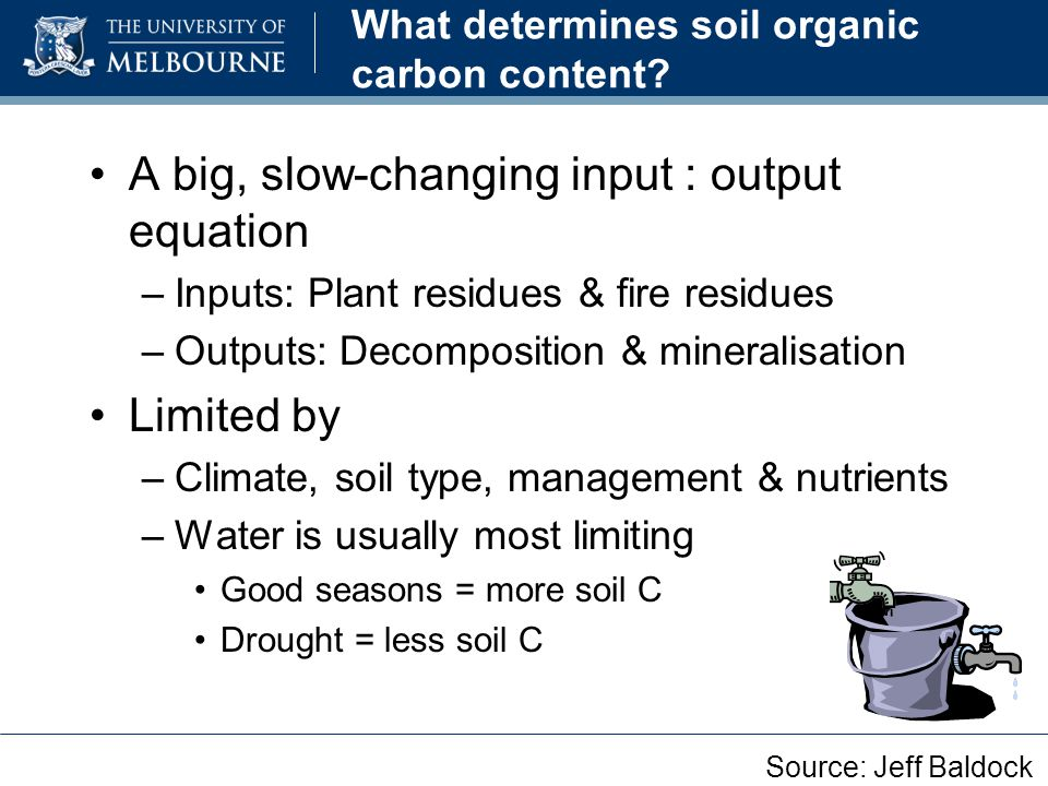 A big, slow-changing input : output equation –Inputs: Plant residues & fire residues –Outputs: Decomposition & mineralisation Limited by –Climate, soi