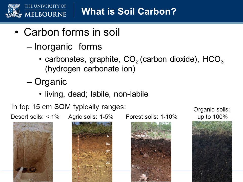 Desert soils: < 1%Agric soils: 1-5%Forest soils: 1-10% Organic soils: up to 100% In top 15 cm SOM typically ranges: Carbon forms in soil –Inorganic forms carbonates, graphite, CO 2 (carbon dioxide), HCO 3 (hydrogen carbonate ion) –Organic living, dead; labile, non-labile What is Soil Carbon?