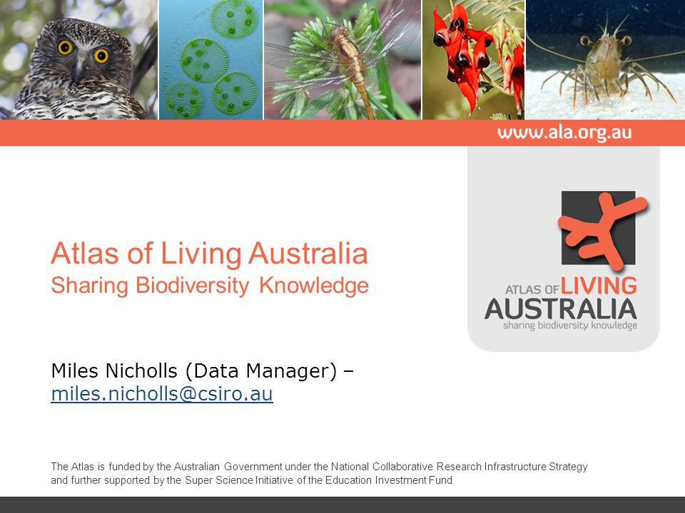 Atlas of Living Australia Sharing Biodiversity Knowledge Miles Nicholls (Data Manager) – miles.nicholls@csiro.au miles.nicholls@csiro.au The Atlas is funded by the Australian Government under the National Collaborative Research Infrastructure Strategy and further supported by the Super Science Initiative of the Education Investment Fund