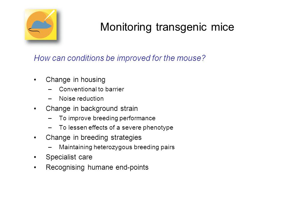 Monitoring transgenic mice How can conditions be improved for the mouse.