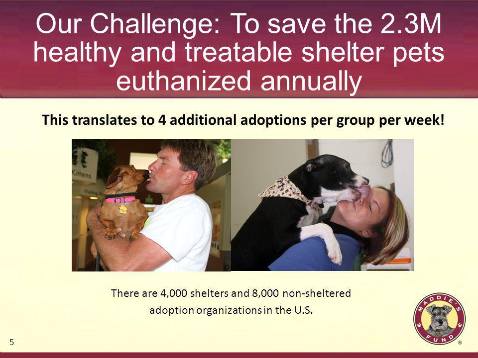 5 Our Challenge: To save the 2.3M healthy and treatable shelter pets euthanized annually This translates to 4 additional adoptions per group per week!