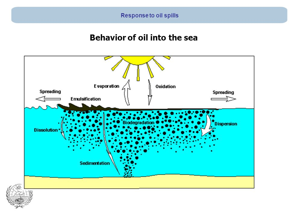 Behavior of oil into the sea Response to oil spills