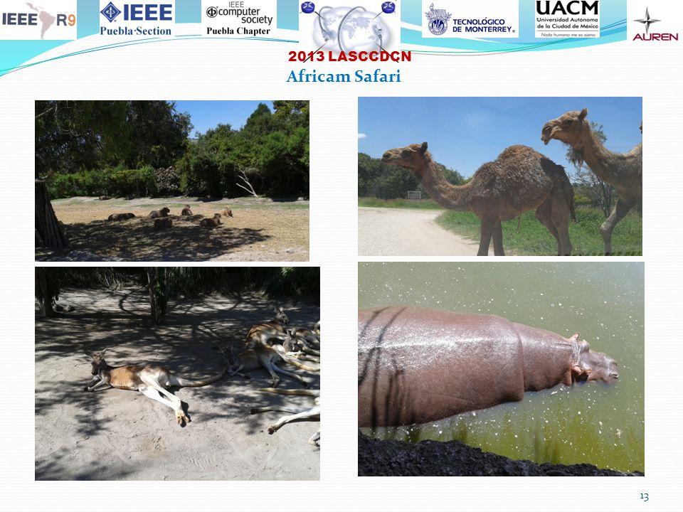 2013 LASCCDCN 13 Africam Safari