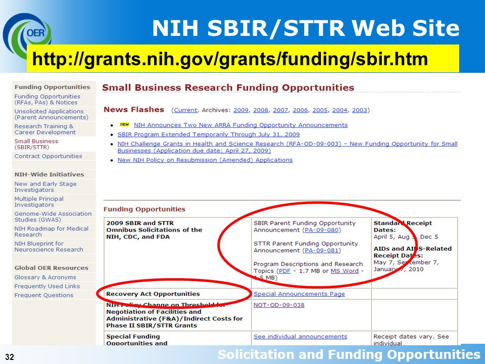 32   NIH SBIR/STTR Web Site Solicitation and Funding Opportunities
