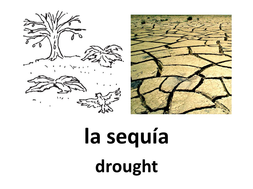 la sequía drought