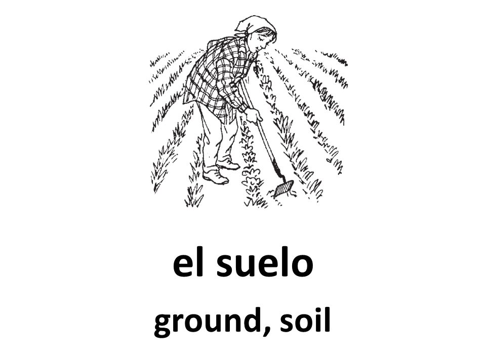 el suelo ground, soil