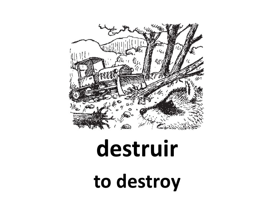 destruir to destroy