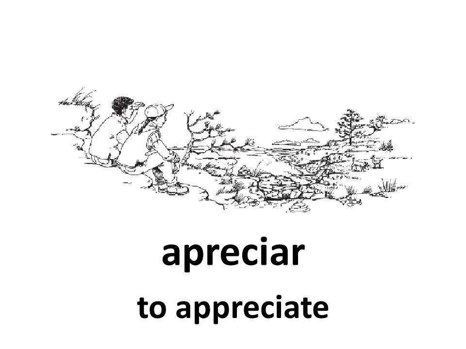 apreciar to appreciate