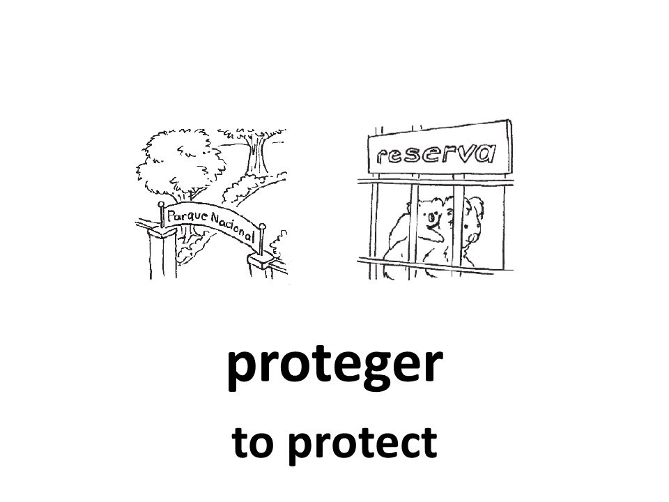 proteger to protect