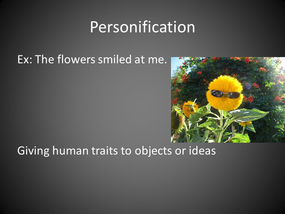 Personification Ex: The flowers smiled at me. Giving human traits to objects or ideas