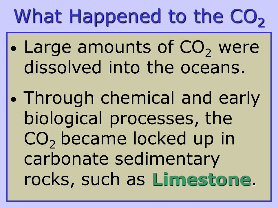 What Happened to the CO 2 Large amounts of CO 2 were dissolved into the oceans.