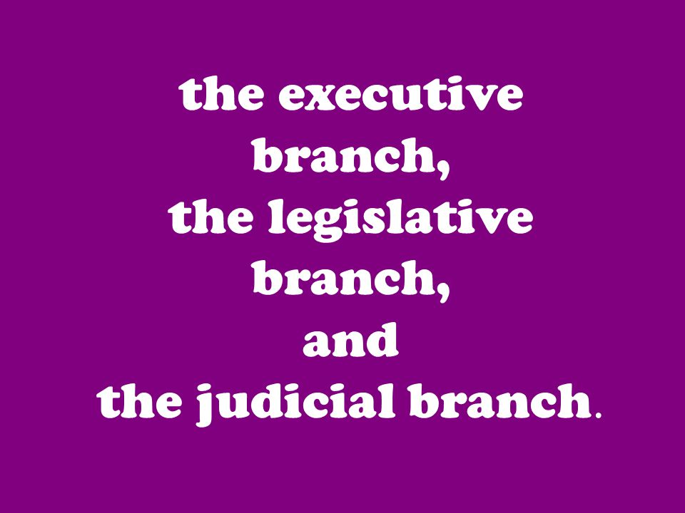 the executive branch, the legislative branch, and the judicial branch.