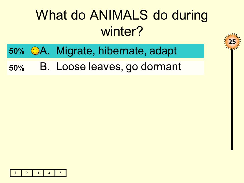 What do ANIMALS do during winter 12345 A.Migrate, hibernate, adapt B.Loose leaves, go dormant 25