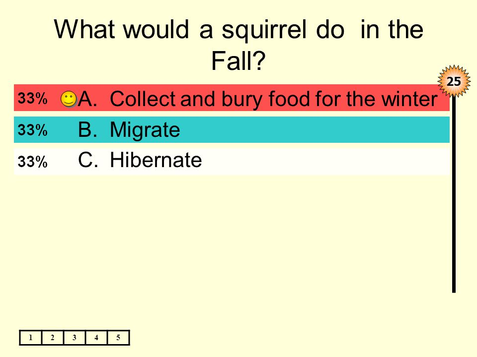 What would a squirrel do in the Fall.