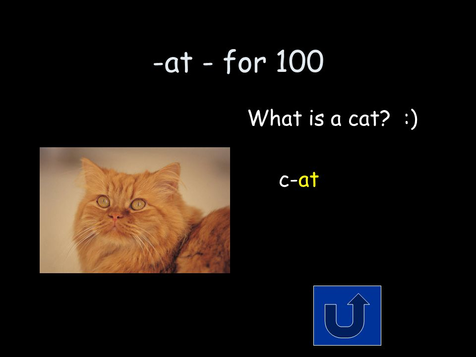 -at - for 100 A type of animal that purrrrs. Remember to phrase your answer in the form of a question!
