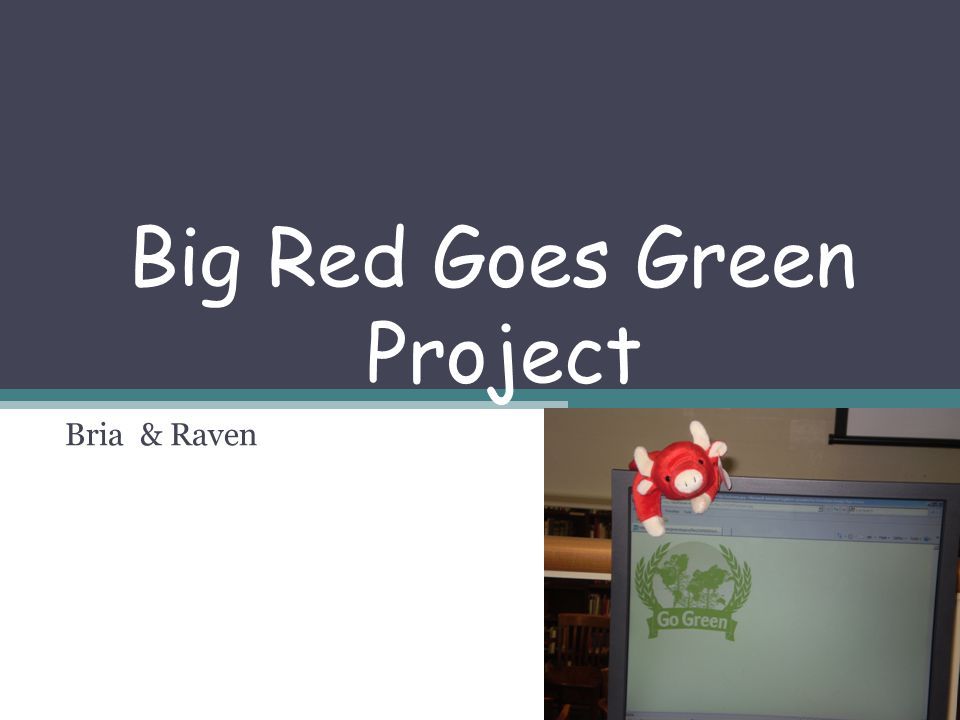 Big Red Goes Green Project Bria & Raven