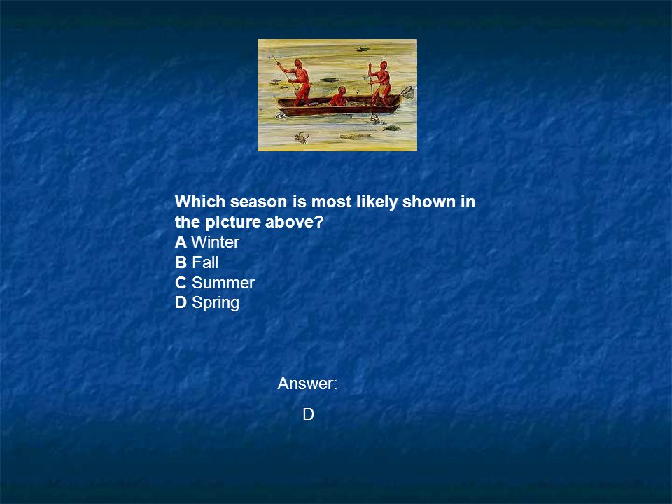 Which season is most likely shown in the picture above? A Winter B Fall C Summer D Spring Answer: D