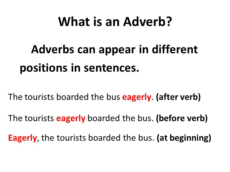 What is an Adverb. Adverbs can appear in different positions in sentences.