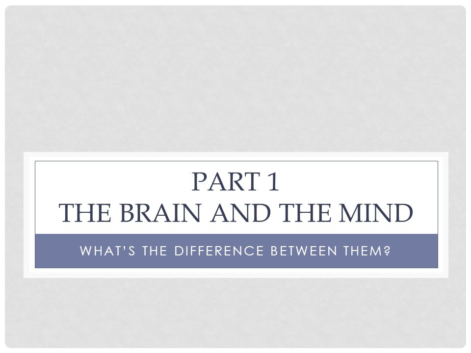 PART 1 THE BRAIN AND THE MIND WHAT'S THE DIFFERENCE BETWEEN THEM?