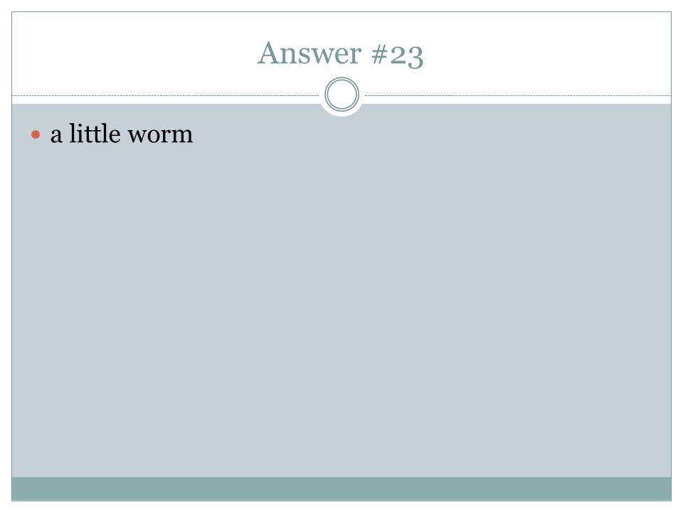 Answer #23 a little worm