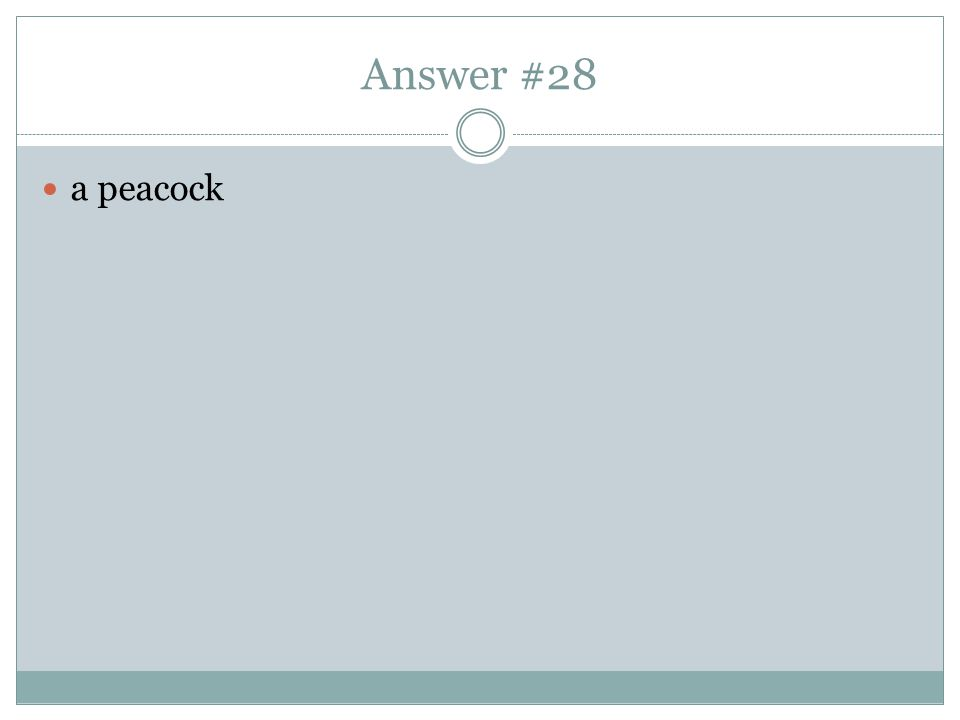 Answer #28 a peacock