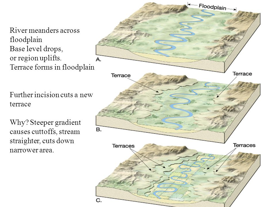 River meanders across floodplain Base level drops, or region uplifts. Terrace forms in floodplain Further incision cuts a new terrace Why? Steeper gra